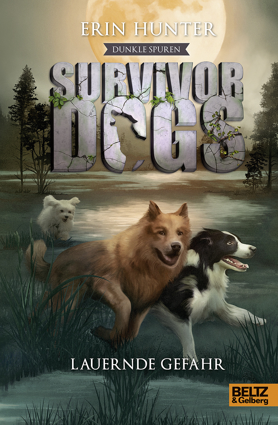 Survivor Dogs - Dunkle Spuren von Erin Hunter bei Amazon bestellen